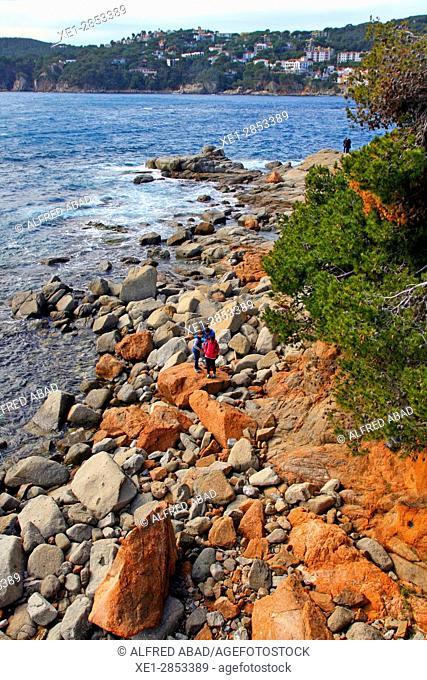 Rocky coast, Calella de Palafrugell, Costa Brava, Catalonia, Spain