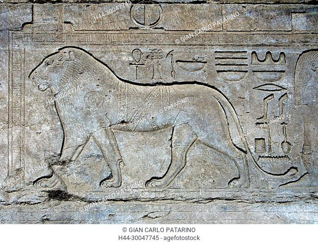 Karnak, Luxor, Egypt. Temple of Karnak sacred to god Amon: a lion carved in a wall