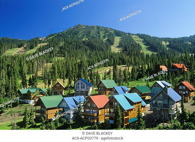Chalets on Mt  Washington in the summer, Vancouver Island, British Columbia, Canada
