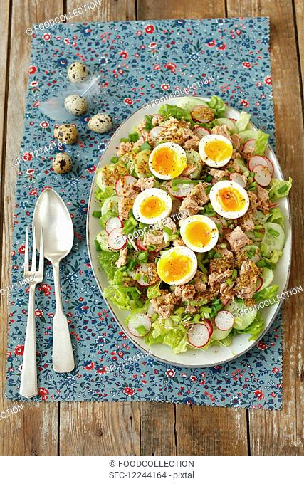 Salad with tuna, egg, cucumber and red radishes for Easter