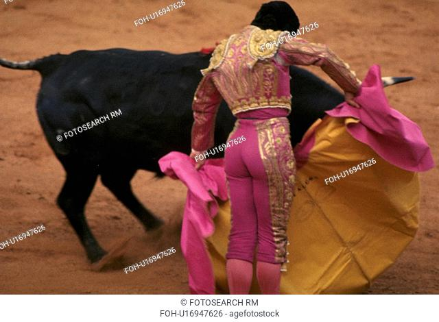 closely, fighting, sport, national, spain, bull