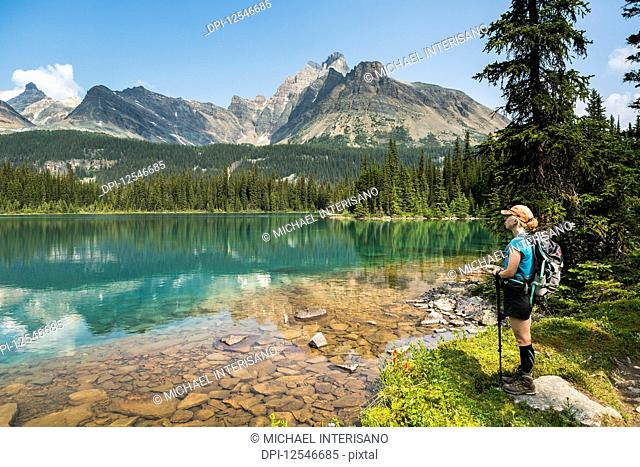 Female hiker standing along the shoreline of an alpine lake refelcting mountain range with blue sky; British Columbia, Canada