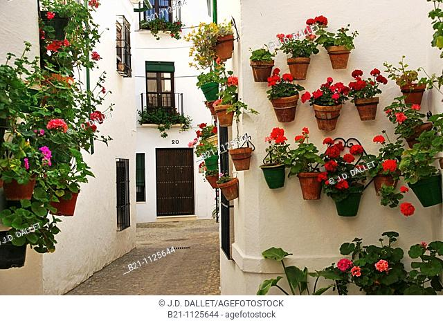 La Villa neighbourhood, Priego de Cordoba, Cordoba province, Andalusia, Spain