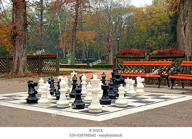 chess figures in autumn park