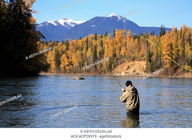 Flyfisherman casting for steelhead, Bulkley river, Smithers, British Columbia