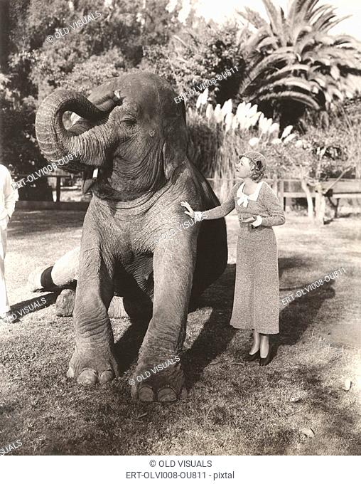 Young woman stroking elephant in zoo