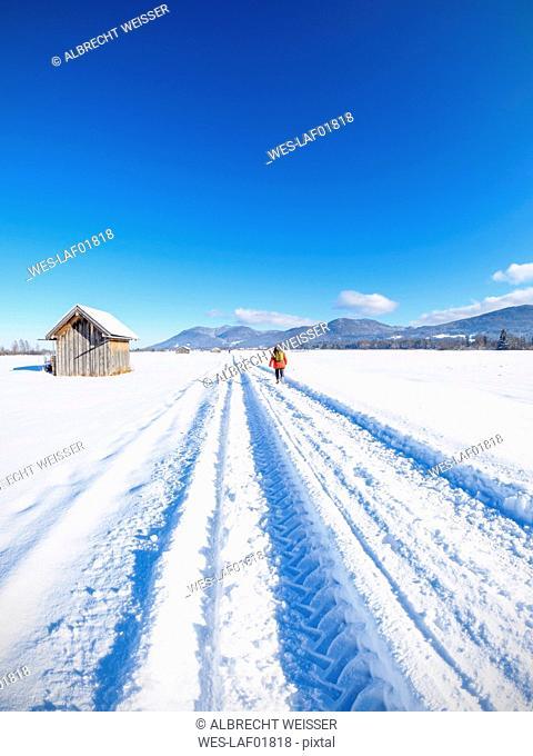 Germany, Bavaria, woman hiking on trail from Kochel am See to Benediktbeuern Abbey in winter