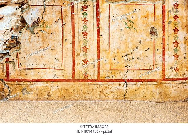 Turkey, Ephesus, Private house mural