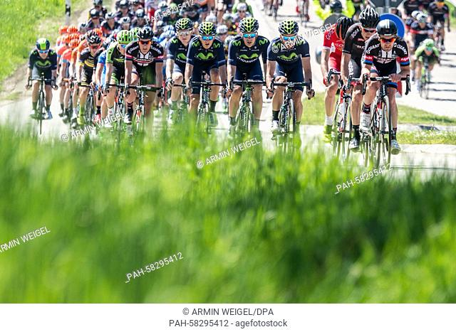 The pack in action during the first stage of the Tour of Bavaria cycling tour, over 221 km from Regensburg to Waldsassen, Germany, 13 May 2015