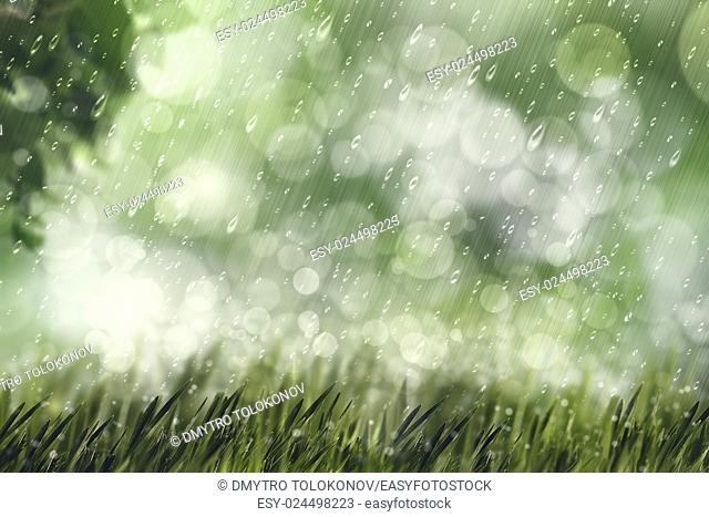 Autumnal rain, beauty natural backgrounds with copy space for your design