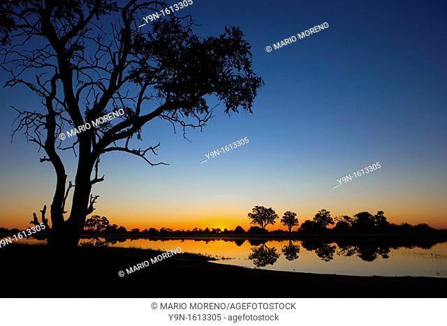 Sunrise in the Okavango Delta in Moremi national Park, Botswana