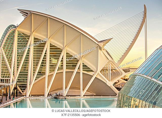 Museu de les Ciencies Principe Felipe with El Pont de l'Assut de l'Or and l'Hemisferic, in City of Arts and Sciences. Valencia, Spain