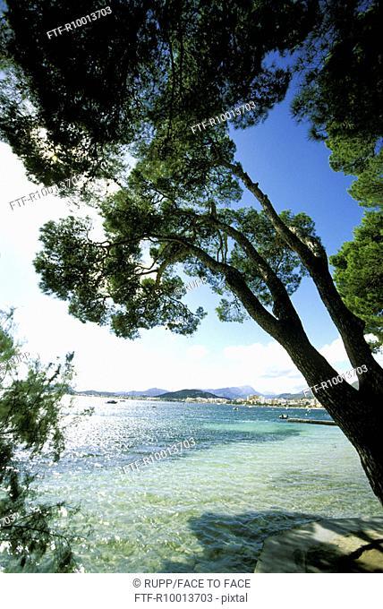 Bay,Porte Polenca, Mallorca, Spain
