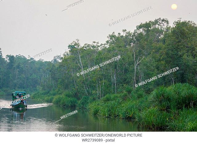Indonesia, Kalimantan, Borneo, Kotawaringin Barat, Tanjung Puting National Park, By boat on the Sekonyer River