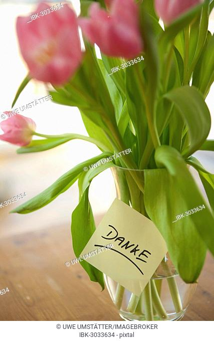 Tulips in vase with the note danke, German for thank you, Mannheim, Baden-Württemberg, Germany