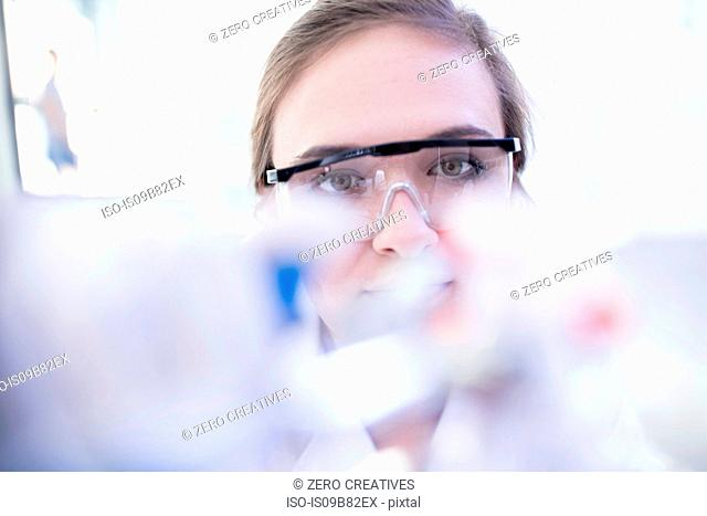 Laboratory worker looking at laboratory equipment