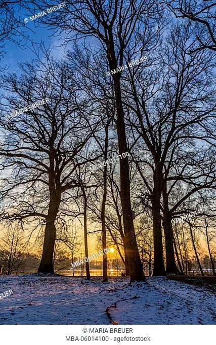 Sunrise, quarry pond, winter, Ingolstadt, Bavaria, Germany