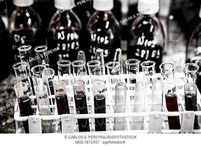 Lab in a wine cellar  Winemaking in the largest wine region of Catalonia, the Penedes  Barcelona, Spain