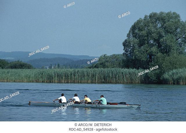 Rowing Boat on the Seerhein view to Wollmatinger Ried Gottlieben Lake Constance Switzerland