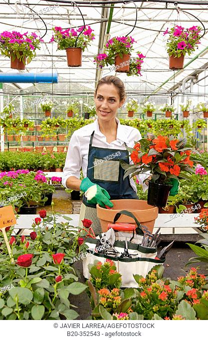 Woman transplanting flowers in pot at garden centre