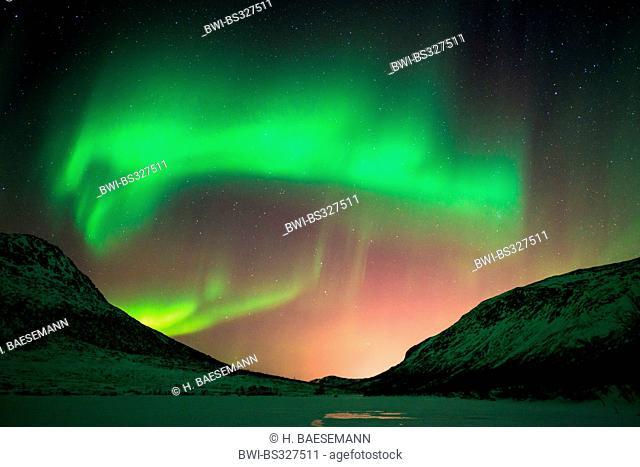 aurora gate in front of the starry sky over snow-covered valley, Norway, Troms, Kvaloea, Kattfjordeidet