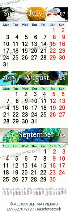 calendar for three months July August and September 2017 with images of landscape moss and yellow leaves. Calendars for mass printing and using as wall...