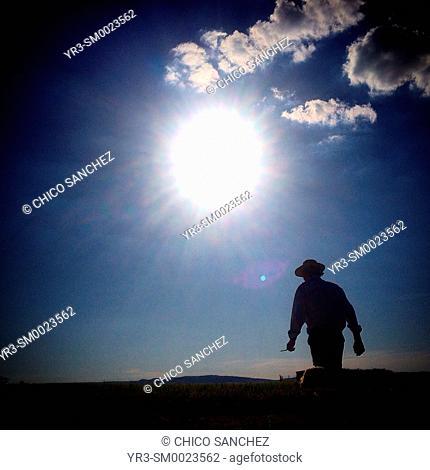 A goatherd walks under the sun in Prado del Rey, Sierra de Grazalema, Andalusia, Spain