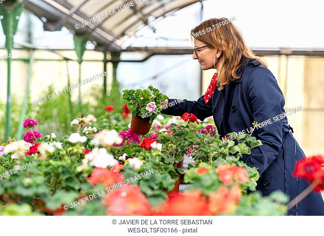 Woman buying flowers in plant nursery