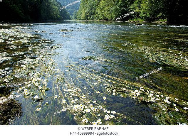 Clos du Doubs in Jura