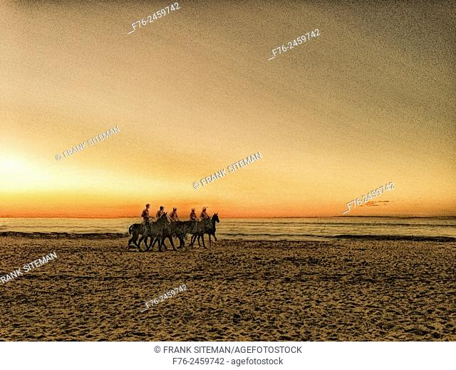 five men, all wearing hats, on horseback, riding along ocean on beach at san pancho, mexico while training polo ponies