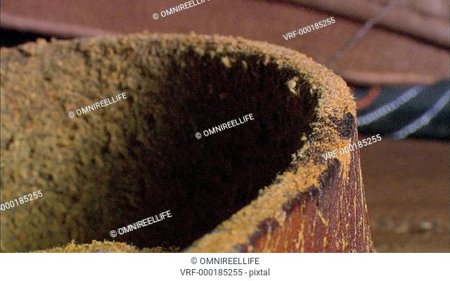 Common Silverfish crawling on Brown boot
