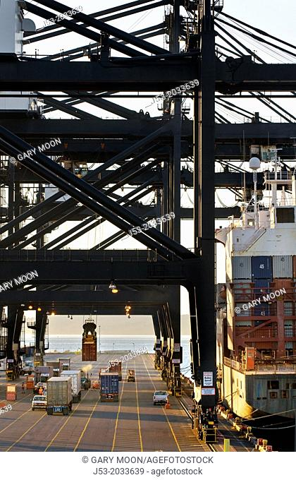 Container ship and container cranes, transferring cargo in container shipping terminal, Port of Tacoma, Washington USA