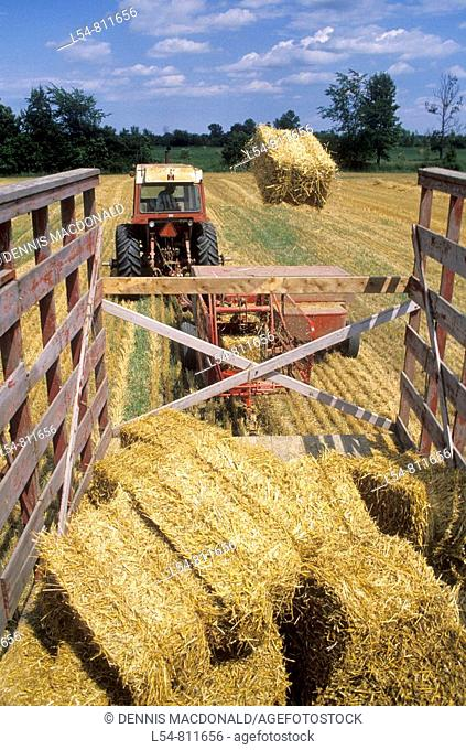 Harvesting Hay near Green Bay Wisconsin