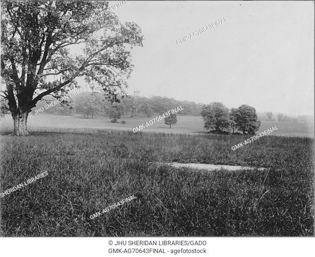 Unoccupied land near Roland Park and Guilford, a field of untrimmed grass and scattered trees, the background consists of trees, United States, 1910