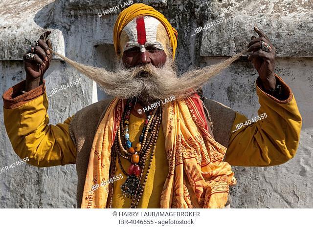 Sadhu with a long beard, painted face, portrait, Pashupatinath, Kathmandu, Nepal