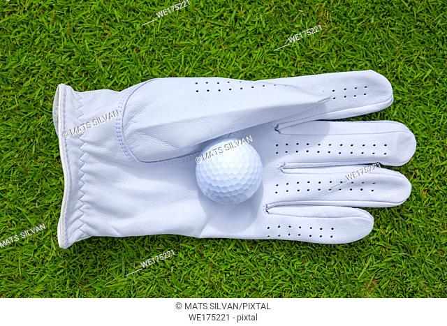 Golf Glove and Ball on the Green Grass in Switzerland