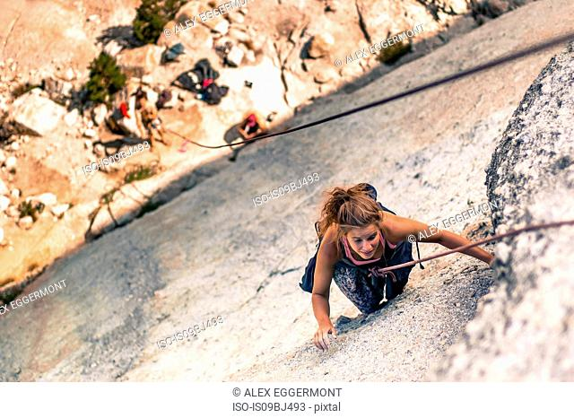 Rock climber rock climbing, Yosemite National Park, United States