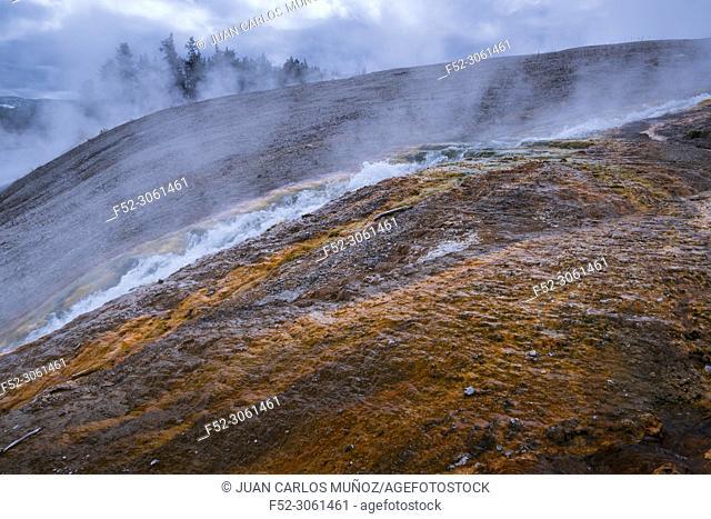 Grand Prismatic Area, Yellowstone National Park, Unesco World Heritage Site, Wyoming, Usa, America