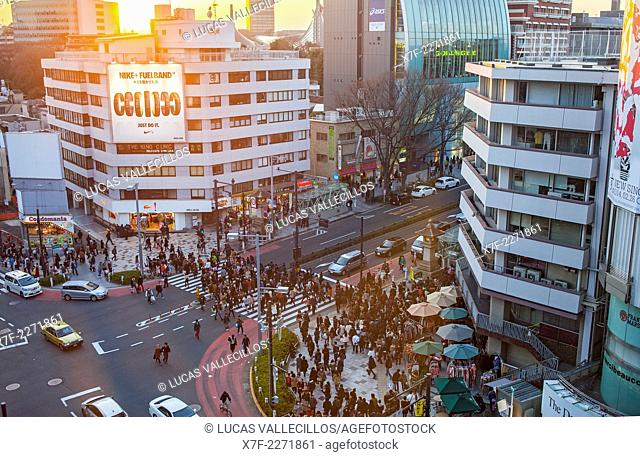 Omotesando street, Tokyo, Japan