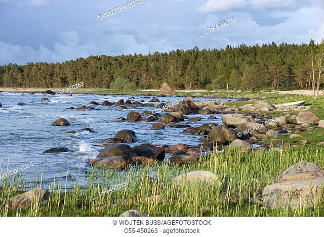 Stone beach on Baltic coast, Saaremaa island. Estonia