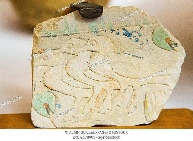 Egypt, Cairo, Egyptian Museum, fragment of a tomb in Saqqara, snaring ducks