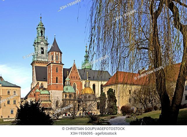 Southern side of Wawel Cathedral, Krakow, Poland, Central Europe