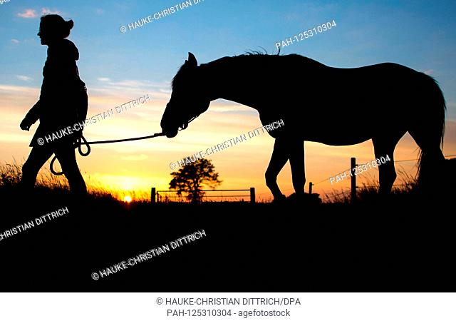 The silhouette of a young woman and her horse in front of the evening sky in Wardenburg (Germany), 10 July 2018. | usage worldwide