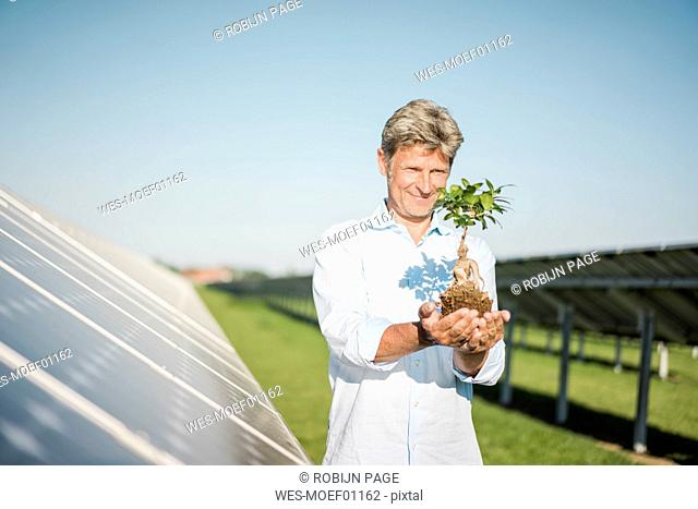 Mature man looking at privet, solar plant