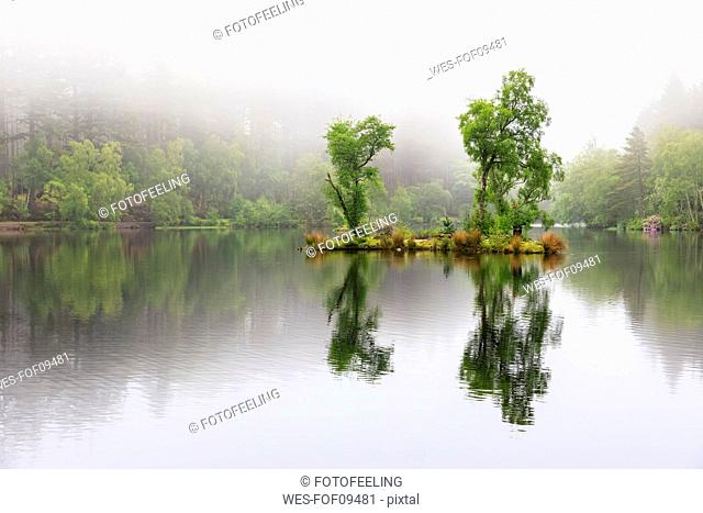 Great Britain, Scotland, Scottish Highlands, Glencoe, Glencoe Lochan, morning fog