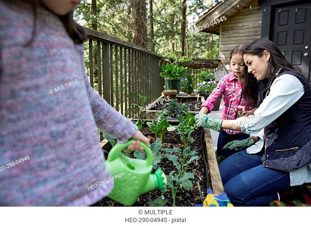 Mother and daughters gardening on balcony