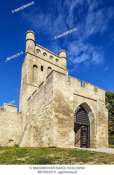 Krakow Gate, Szydlow, Swietokrzyskie Voivodeship, Poland, Europe