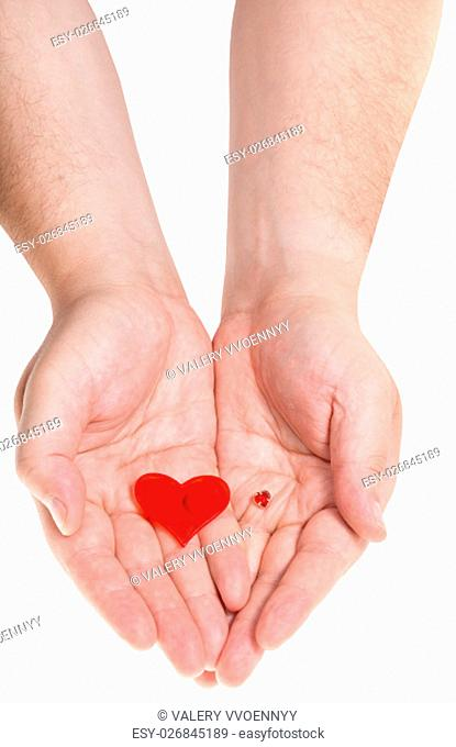 two red hearts on male palms isolated on white background