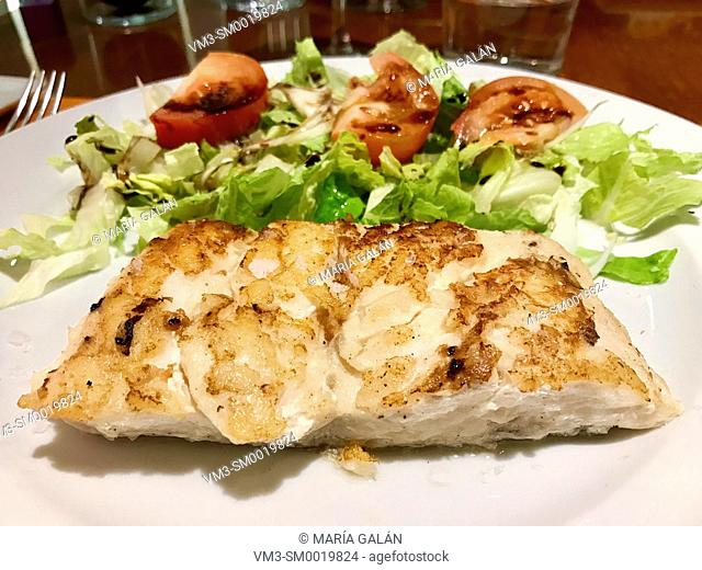 Grilled hake loin with tomato and lettuce salad. Close view