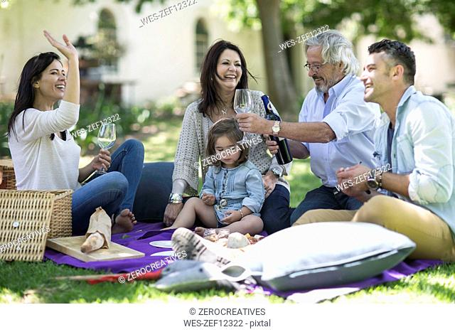 Happy extended family having a picnic